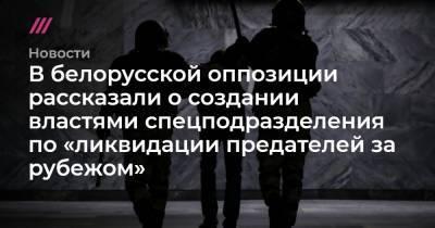 В белорусской оппозиции рассказали о создании властями спецподразделения по «ликвидации предателей за рубежом»
