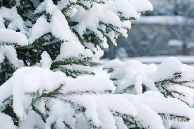 Синоптики предупредили о резком переходе от аномальных морозов к теплу