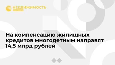 Мишустин: 14,5 млрд руб будет направлено на компенсацию жилищных кредитов многодетным семьям