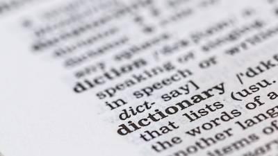 Петербургские ученые выяснили, как эффективнее усваивать новые иностранные слова
