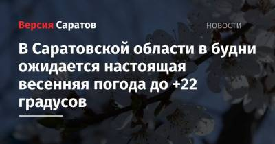 В Саратовской области в будни ожидается настоящая весенняя погода до +22 градусов