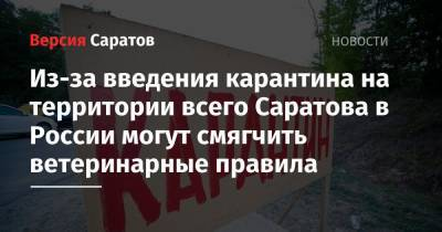 Из-за введения карантина на территории всего Саратова в России могут смягчить ветеринарные правила
