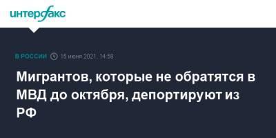 Мигрантов, которые не обратятся в МВД до октября, депортируют из РФ