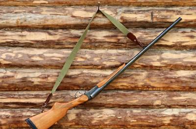 Возраст владения оружием предложили повысить до 21 года