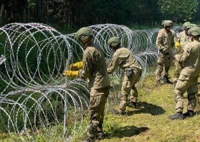 Литве не хватило проволоки, чтобы установить забор на границе с Белоруссией
