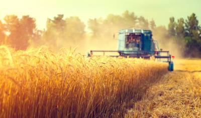 Россельхозбанк в 2021 году выдал аграриям Башкирии 59% кредитов на льготных условиях