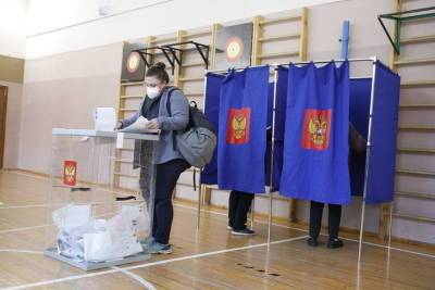 Наблюдать за выборами в Петербурге будут более 6,5 тысяч горожан